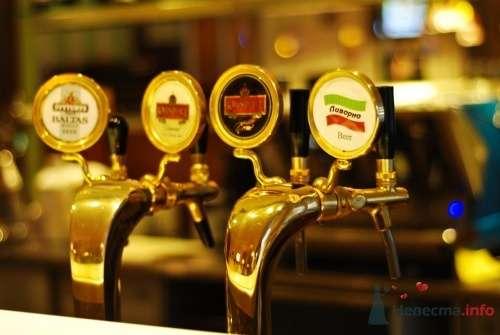 """У нас есть своё фирменное пиво. - фото 10562 Сеть ресторанов """"Ливорно"""""""