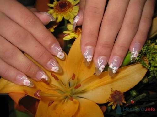 Прозрачные ногти - фото 6229 PerfectioNails - наращивание ногтей гелем и акрилом