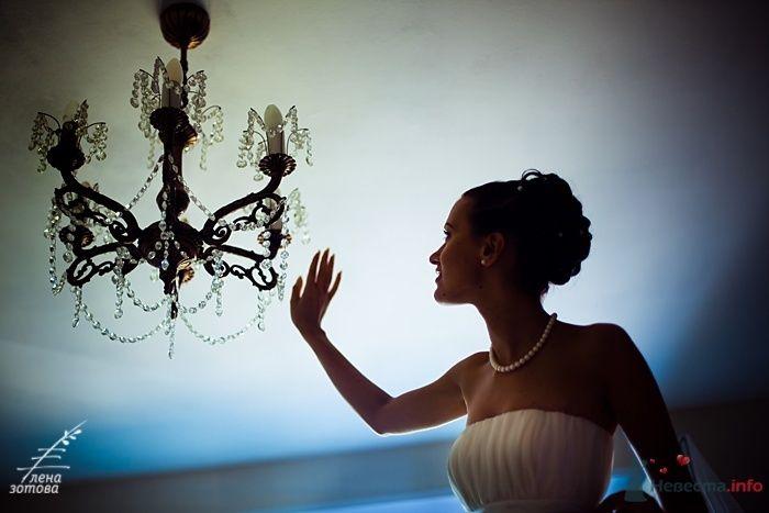 Фото 31780 в коллекции Свадебное - Фотограф Елена Зотова