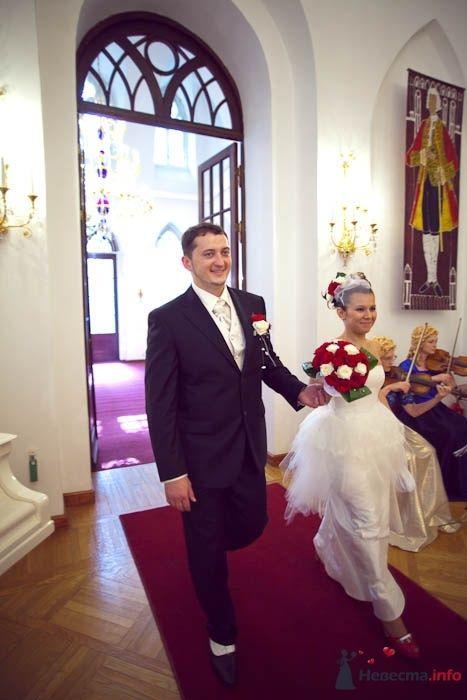 Фото 42009 в коллекции Свадьба Карины и Романа - Фотограф Елена Зотова
