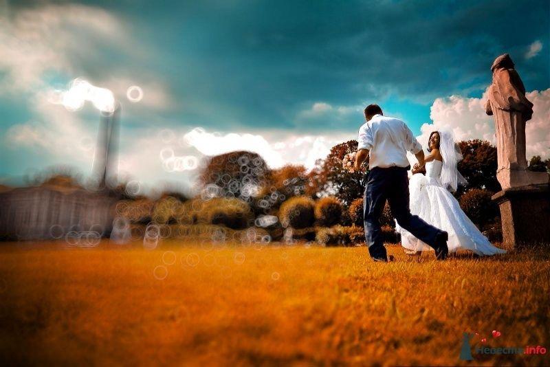 Фото 55679 в коллекции Свадебное - Фотограф Елена Зотова