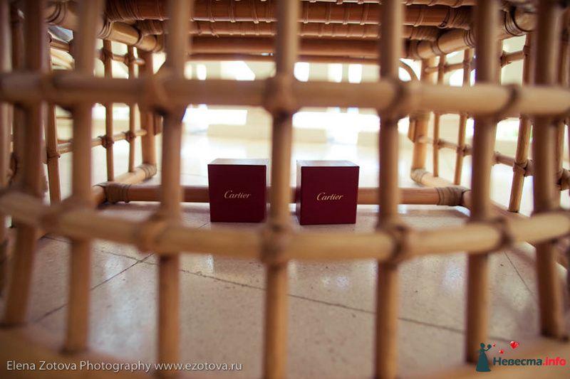 Фото 111047 в коллекции Кипр. Свадьба Кати и Сережи - Фотограф Елена Зотова