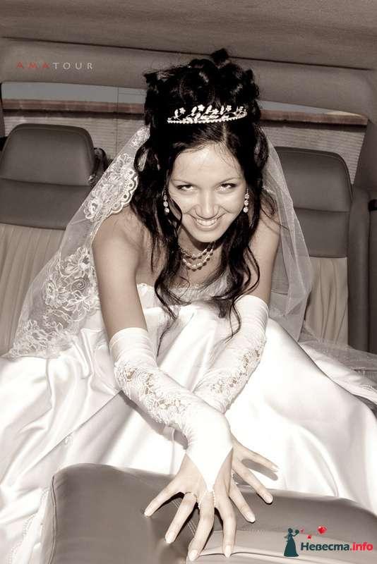 Фото 87353 в коллекции Amatour (свадебное) - Amatour