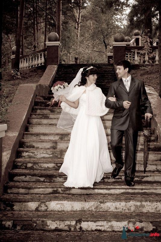 Фото 87361 в коллекции Amatour (свадебное) - Amatour