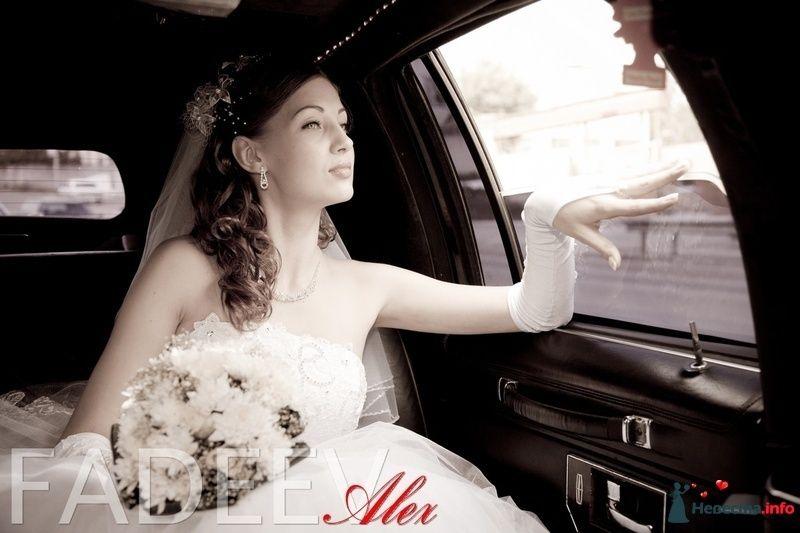 Фото 115188 в коллекции Свадьба Натальи и Александра - Amatour
