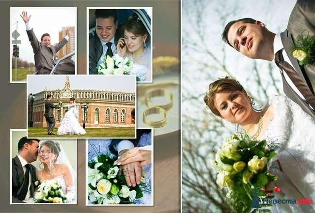Свадебный Коллаж - фото 87435 StudioProff - фото и видео