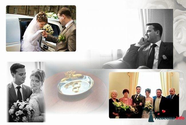 Свадебный Коллаж - фото 87440 StudioProff - фото и видео