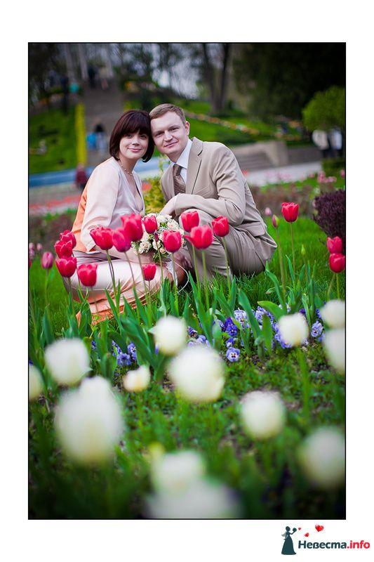 **** - фото 129051 Дмитрий Коробкин. Свадебный фотограф.