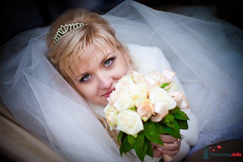 **** - фото 129230 Дмитрий Коробкин. Свадебный фотограф.