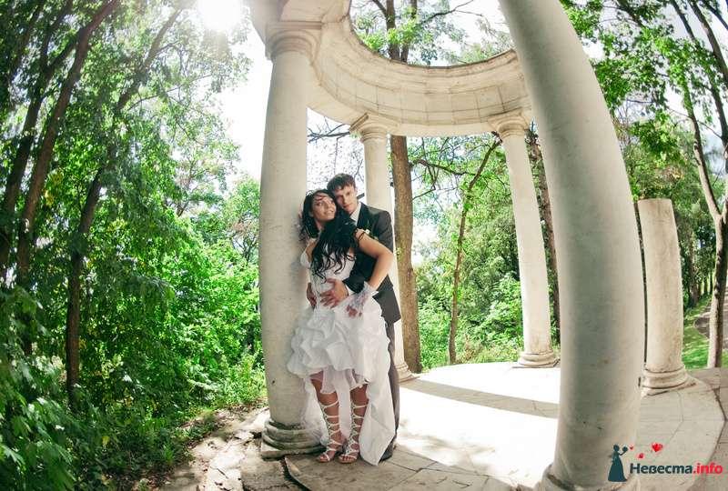 Фото 89218 в коллекции Свадьба - Любовь Ю.