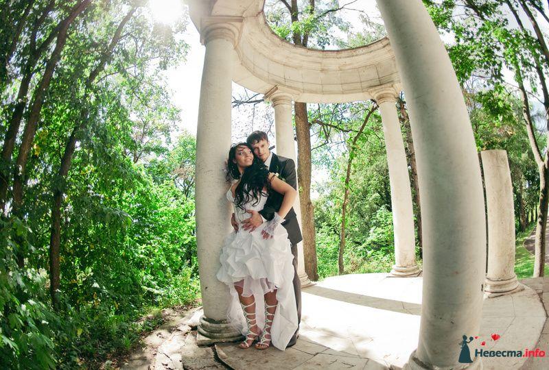 Фото 89218 в коллекции Свадьба