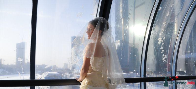 Фото 89623 в коллекции Мои фотографии - Невеста01