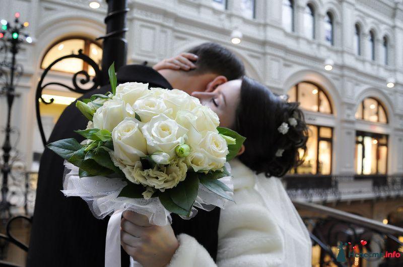Фото 89634 в коллекции Мои фотографии - Невеста01