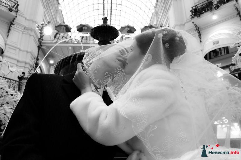 Фото 89637 в коллекции Мои фотографии - Невеста01