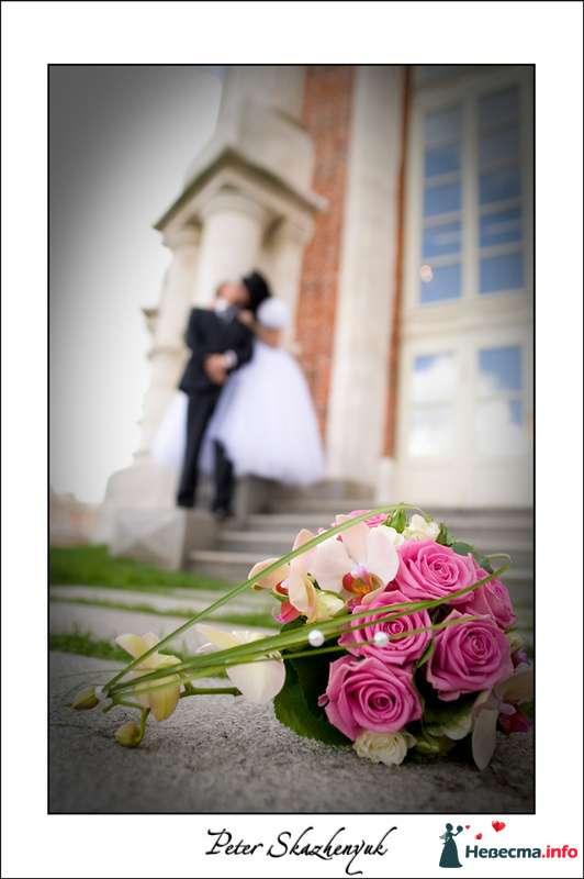 Фото 88705 в коллекции Свадебные фотографии www.smile2smile.ru - Свадебный фотограф Петр Скаженюк