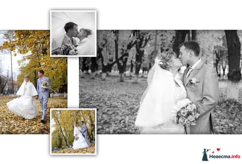 Съемка свадеб  - фото 88528 Видеооператор Алексей Никулин