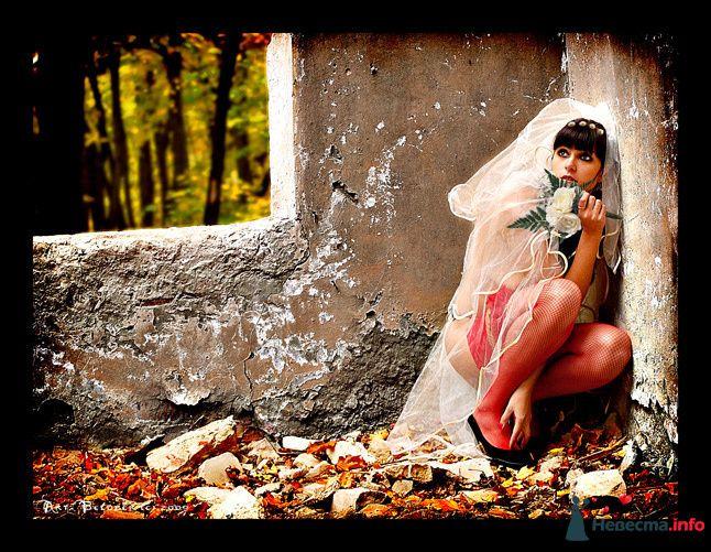 *** - фото 88345 Невеста01