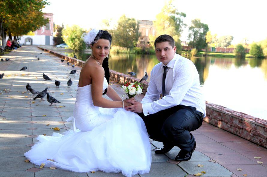 Фото 2313478 в коллекции Свадебные фото - Видеограф Пичугин Антон