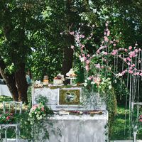 Свадьба Никиты и Лизы. Сырный  стол