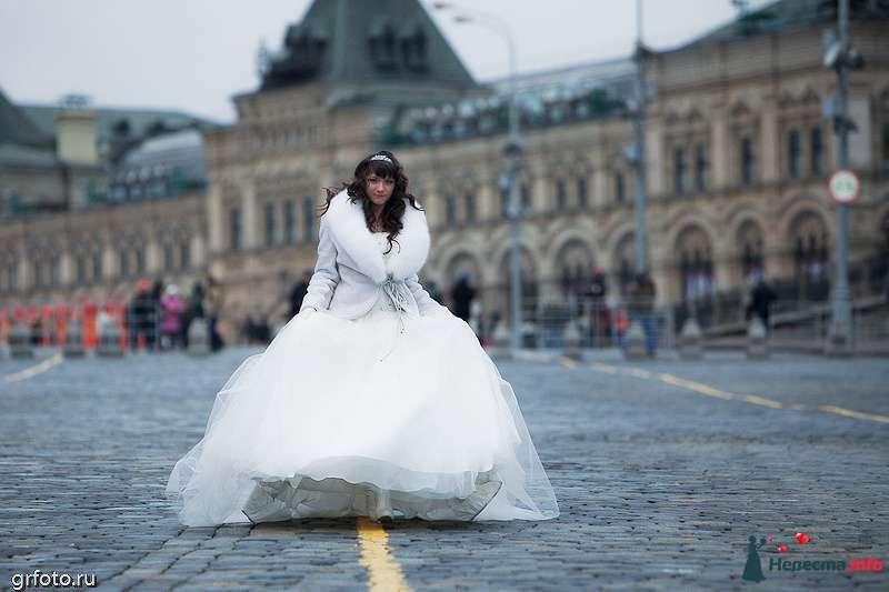 Фото 89556 в коллекции Свадьбы - Фотограф Гришин Александр