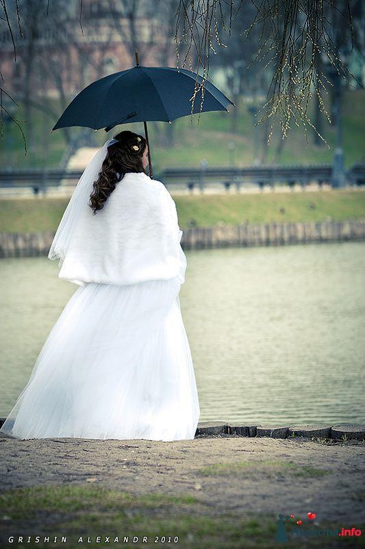 Фото 102073 в коллекции Свадьбы