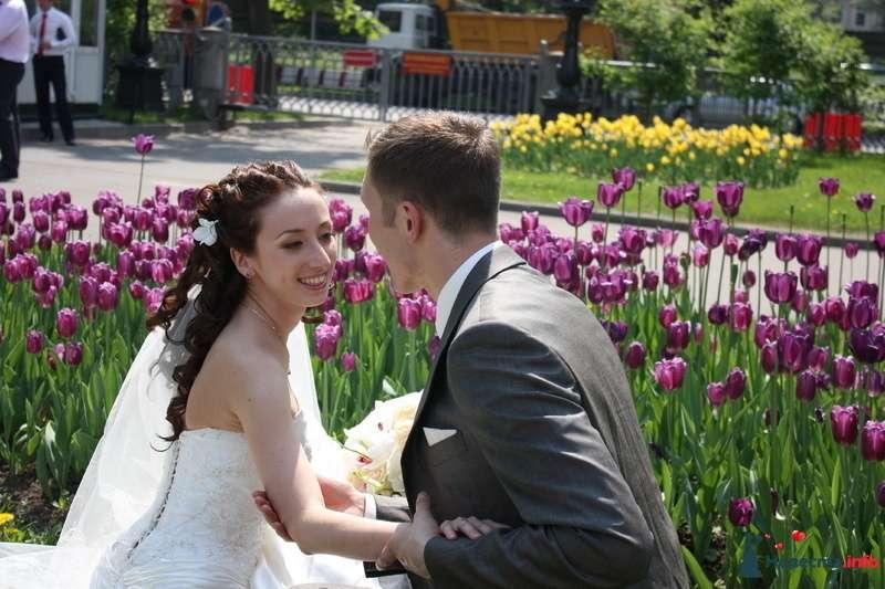 свадьба Николай и Мария - фото 106429 Фотограф Махмутова Эльмира