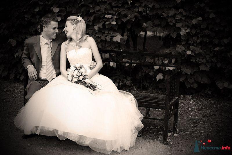 Жених и невеста сидят, прислонившись друг к другу, в парке на скамейке