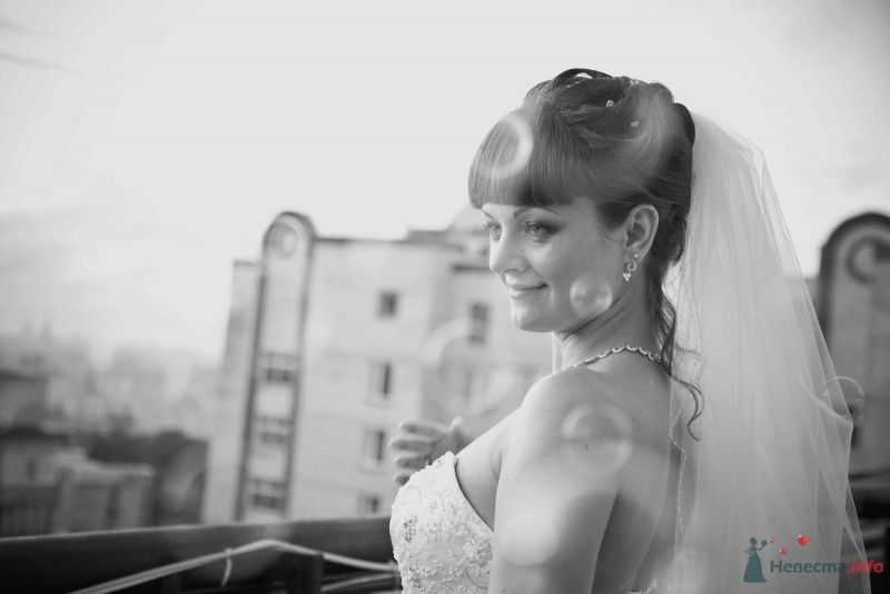 Фото 37261 в коллекции Свадебные фото - Поля