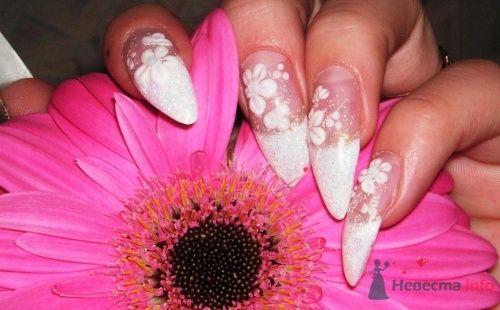 """Фото 6381 в коллекции  дизайн ногтей - Салон красоты и косметологии """"АфродитаSPA"""""""