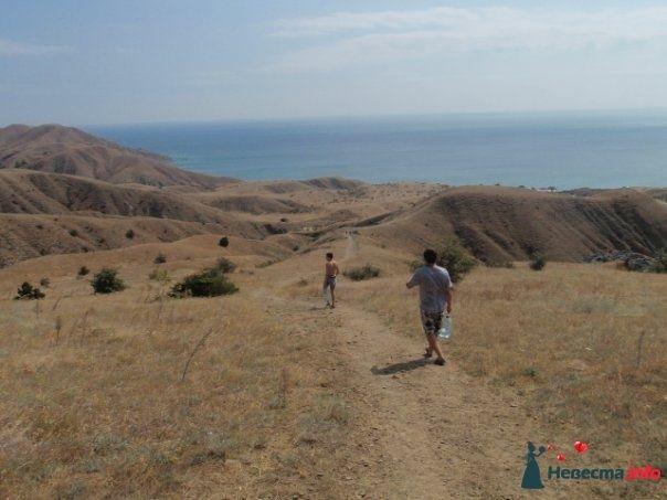 Фото 165196 в коллекции Медовый и морская прогулка с фотографом - elnegma