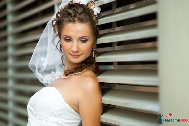 Фото 91917 в коллекции Мои фотографии - Свадебный фотограф Роман Пламеневский