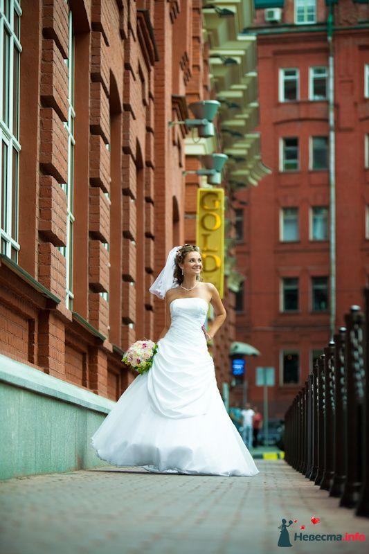 Фото 91918 в коллекции Мои фотографии - Свадебный фотограф Роман Пламеневский