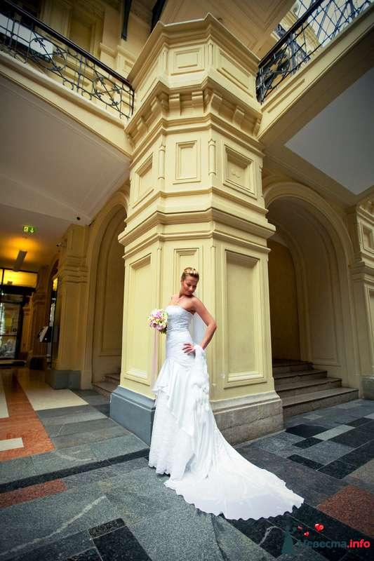 Фото 91920 в коллекции Мои фотографии - Свадебный фотограф Роман Пламеневский