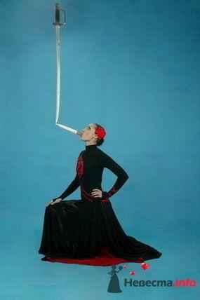 Фото 92957 в коллекции Артисты и ведущие - Ведущая - Ольга Павликова