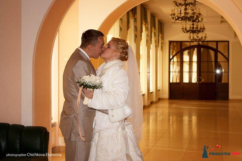 Фото 92227 в коллекции Свадьба - Фотограф Чичкова Екатерина