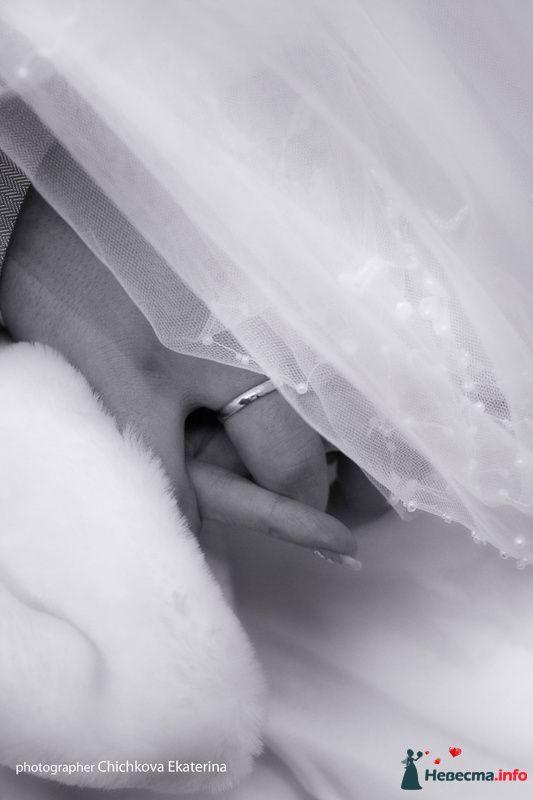 Фото 92231 в коллекции Свадьба - Фотограф Чичкова Екатерина