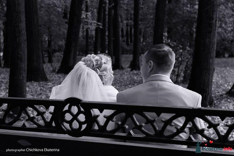 Фото 92238 в коллекции Свадьба - Фотограф Чичкова Екатерина