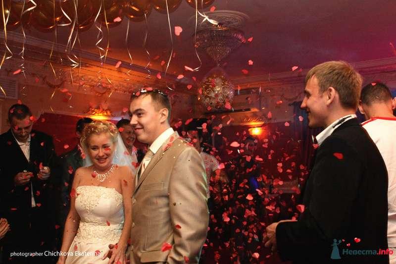 Фото 92240 в коллекции Свадьба - Фотограф Чичкова Екатерина