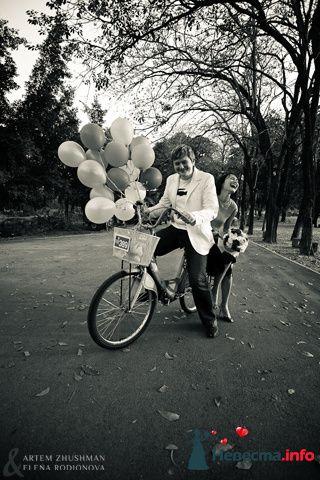 Фото 96012 в коллекции Wedding & Love - Holiday photographers - фотосъемки в России и Таиланде