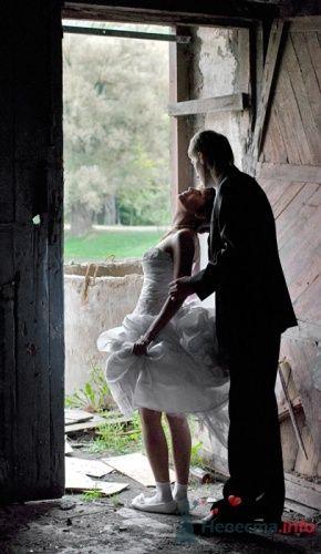 Фото 8522 в коллекции Свадебные фотографии - Невеста01