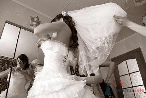 Фото 8537 в коллекции Свадебные фотографии - Невеста01