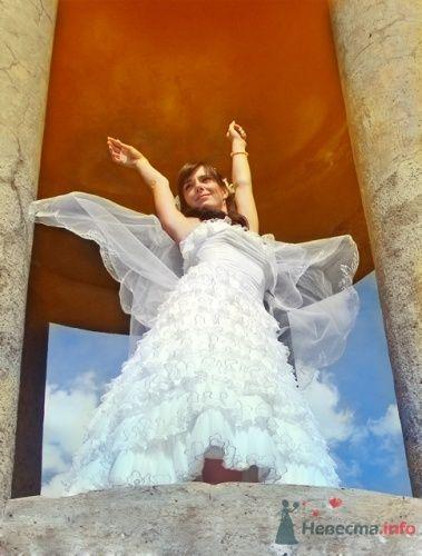 Фото 8544 в коллекции Свадебные фотографии - Невеста01