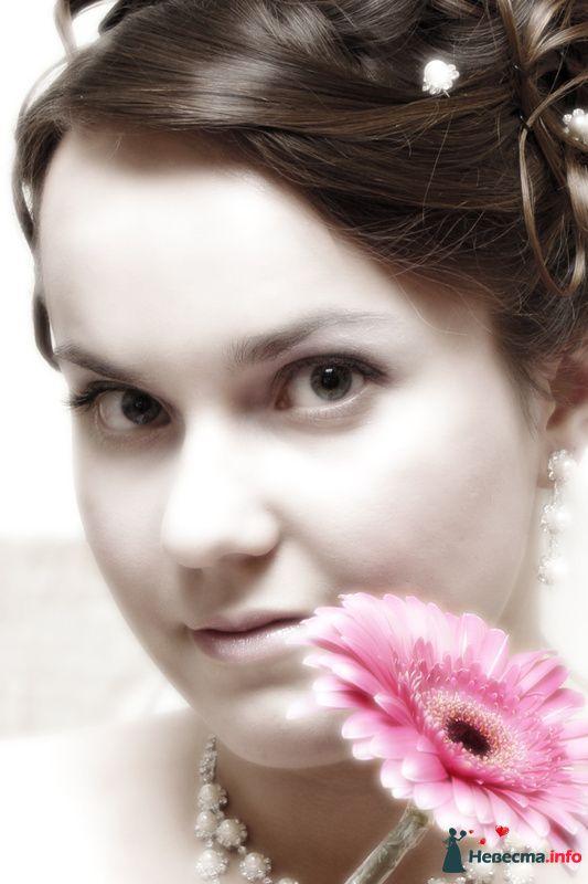 Фото 116352 в коллекции Свадебные фото - Фотостудия АПЕКС