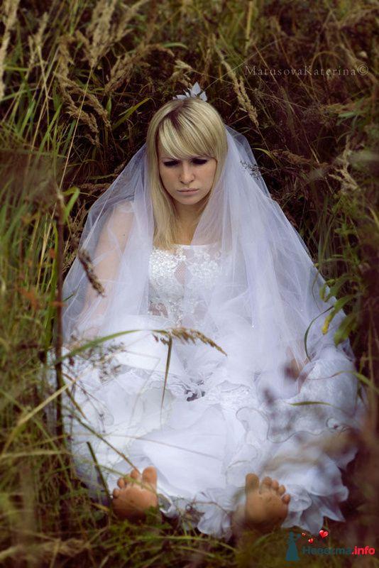 Фото 97448 в коллекции Свадьба - Olysha