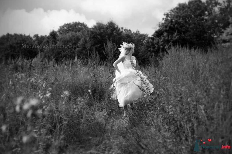 Фото 97449 в коллекции Свадьба - Olysha