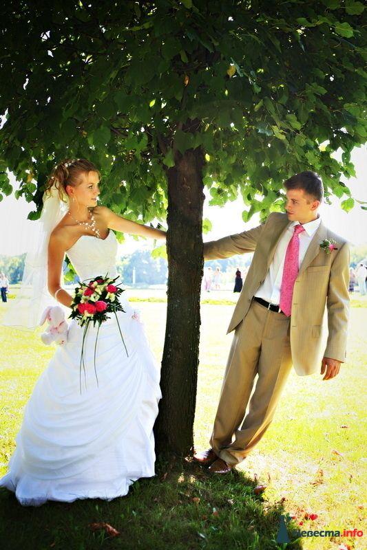 Фото 98340 в коллекции Фотографии со свадеб - Фотограa Владимир Соколов
