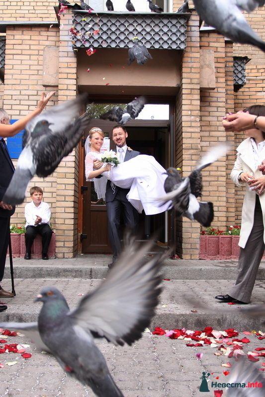 Фото 98349 в коллекции Фотографии со свадеб - Фотограa Владимир Соколов