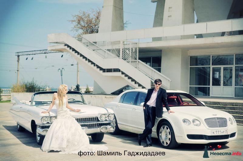 """Фото 97878 в коллекции Свадебное фото - Компания """"КАРАВАН-СЕРВИС"""""""