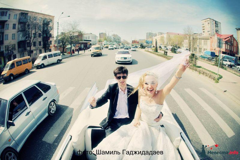 """Фото 97879 в коллекции Свадебное фото - Компания """"КАРАВАН-СЕРВИС"""""""