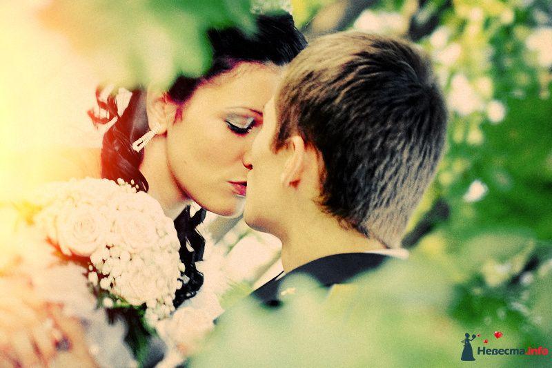 Фото 98750 в коллекции Свадебные фотографии - Ян